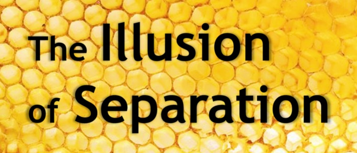 the_illusion_of_separation